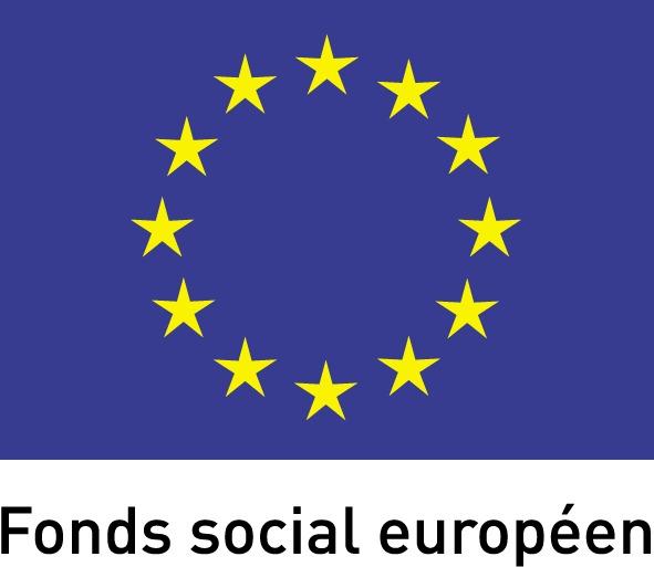 fond social europeen - centre-de-formation-massage.org - strasbourg - 67